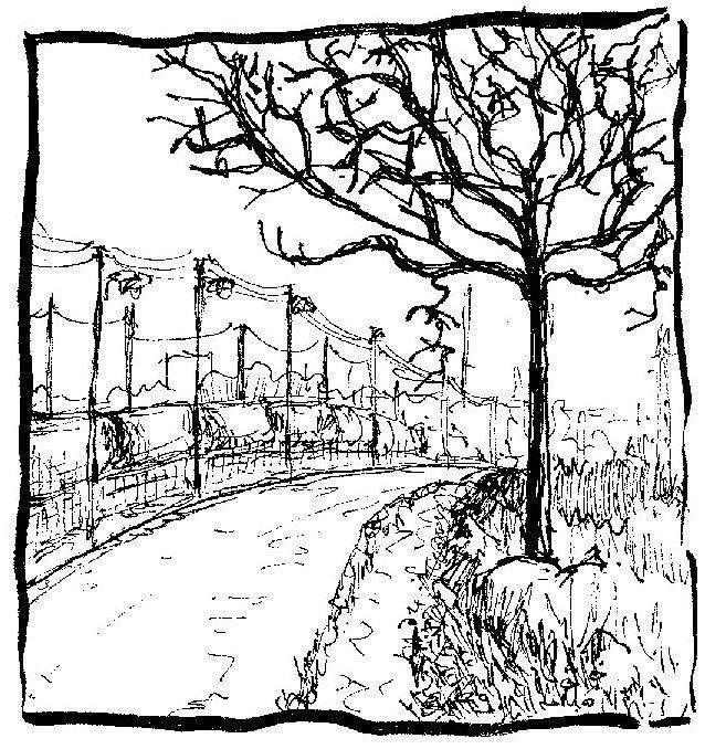 arbres sur rail