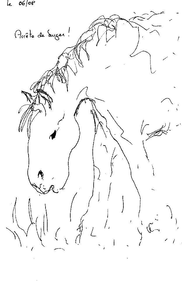 cheval à inishmore