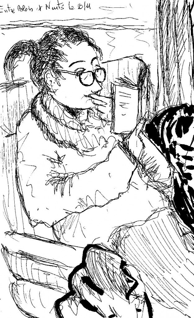 liseuse dans le train