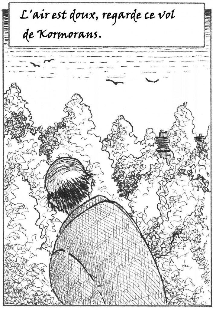 kormorans