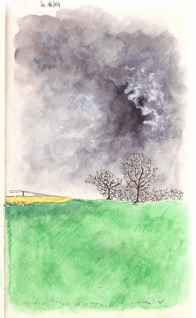 arbre ciel