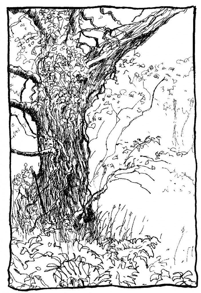 arbre de joie