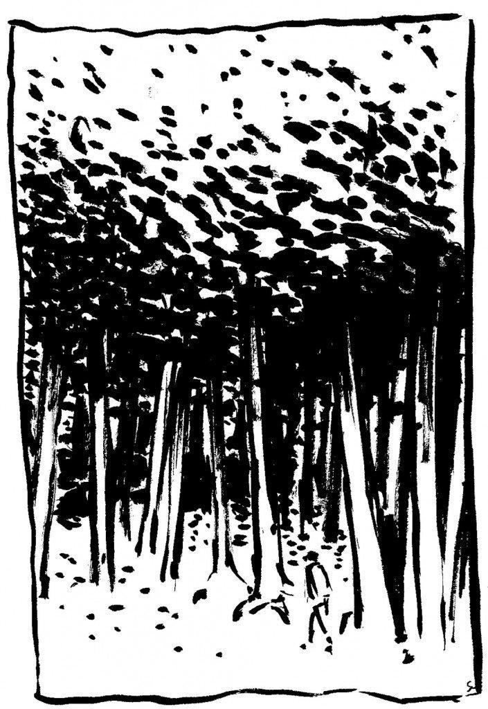 forêt pinceau