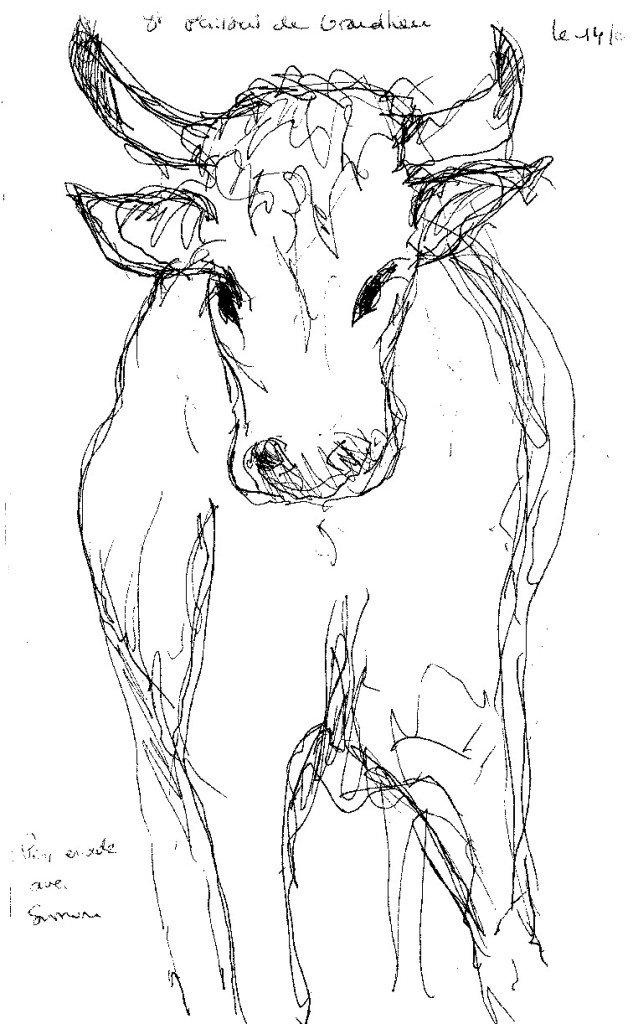 vache st philbert