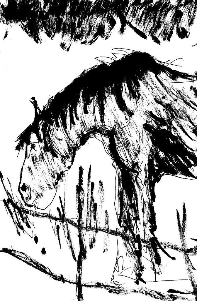 cheval broutte