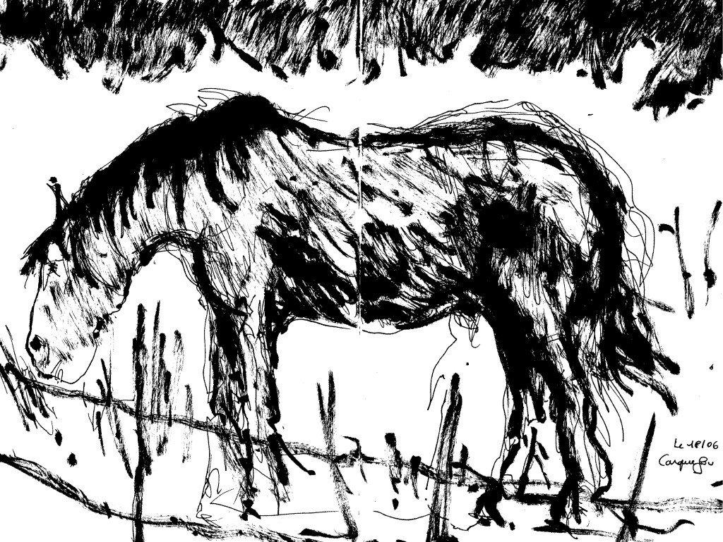 cheval.broutte