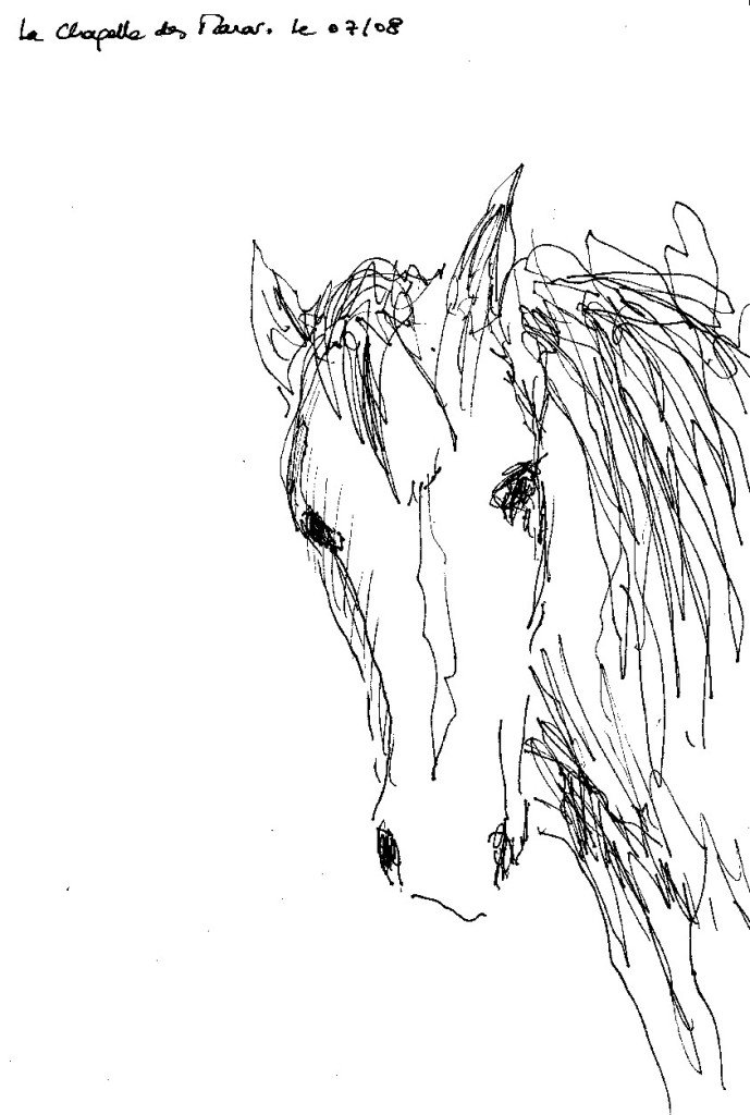 encolure cheval