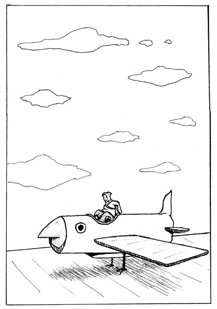 avion .oiseau.