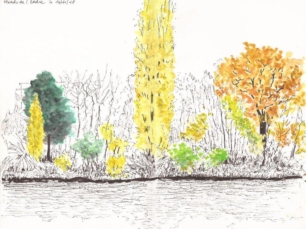 arbres en automnes