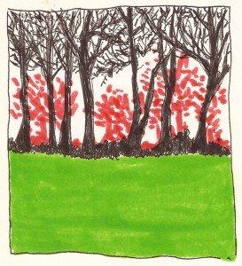 paysage couleur
