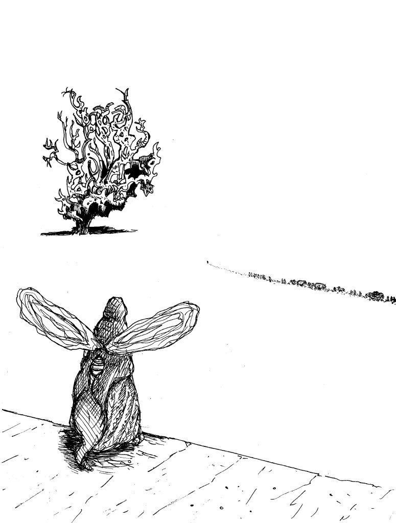 arbre dans le désert