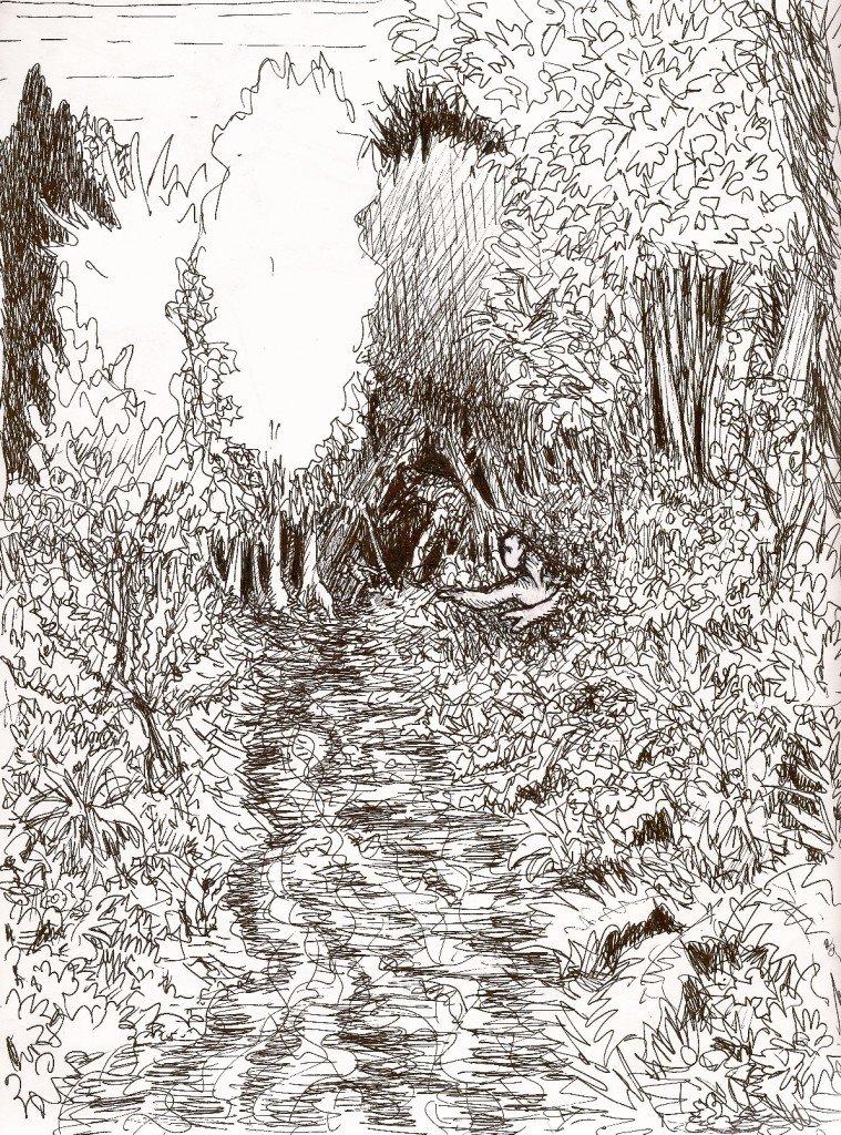 fuite.forêt.
