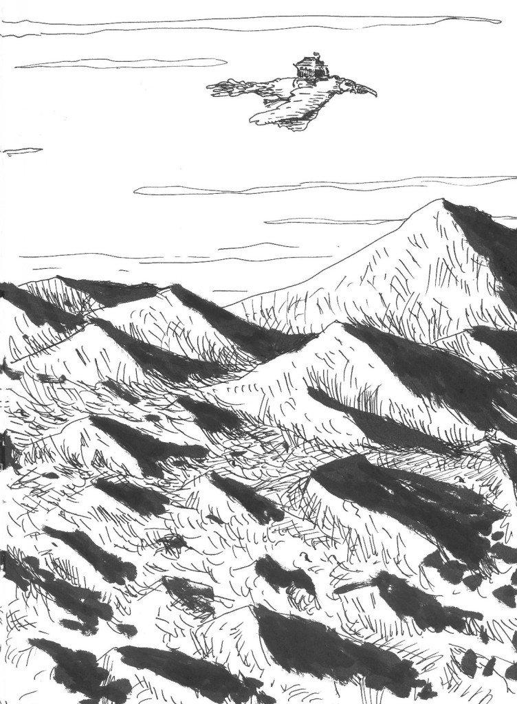 vol au dessus du désert ( détail )