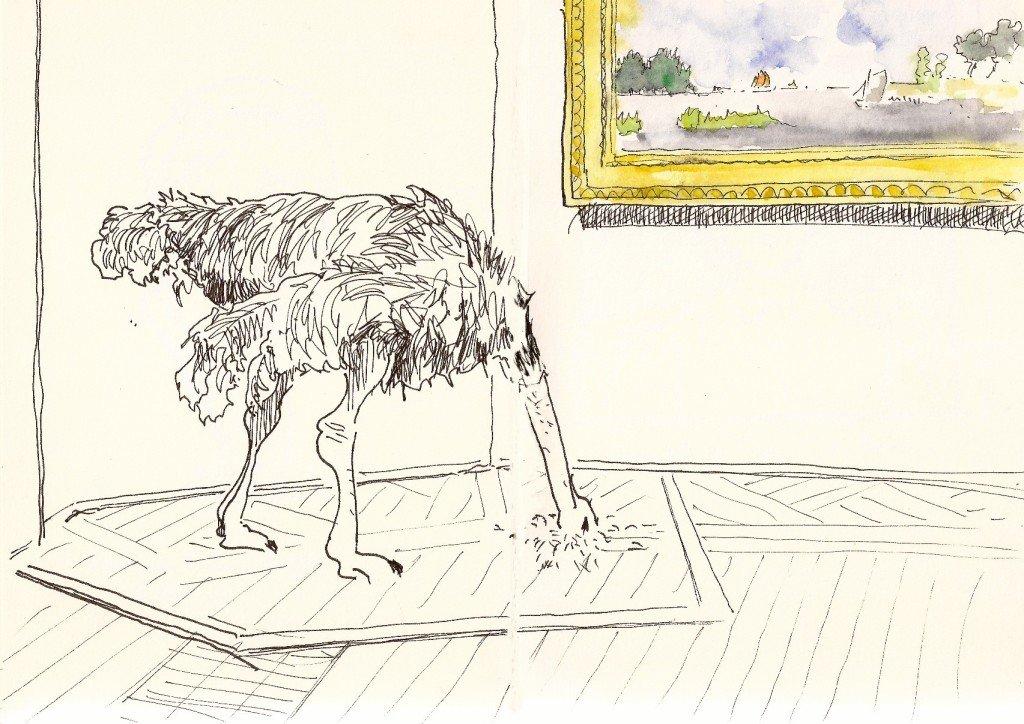 autruche au musée